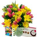 Tulip and Freesia Gift Set