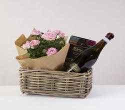 Prosecco and Rose Plant Hamper flowers